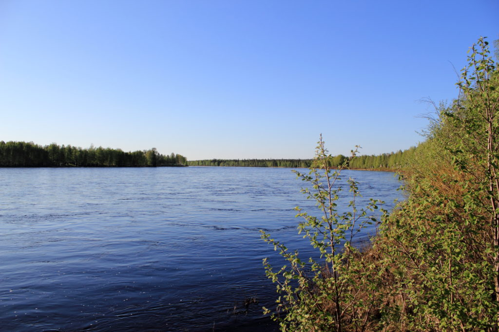 Ounasjoki river in June.